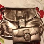 Blogger Sign Up   FREE : Coach Purse and Wallet Giveaway