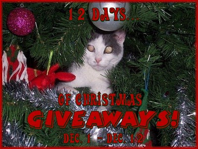 Blogger Sign Up : 12 Days of Christmas Event