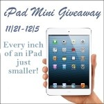 Enter : iPad mini Giveaway