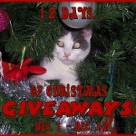 Enter : 12 Days of Christmas : 40 Giveaway Event