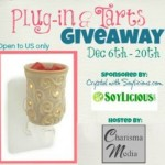 Enter : Plug-in Tarts Giveaway