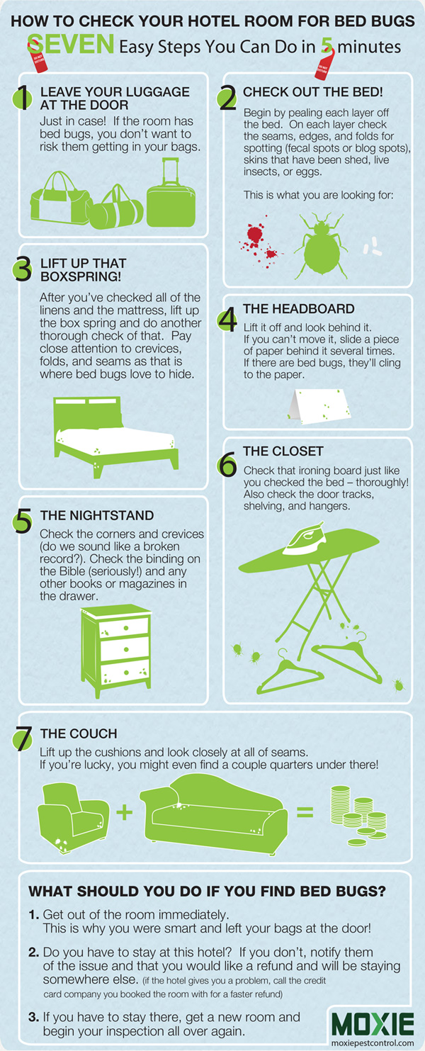 rp_hotel-bed-bugs-infographic-600.jpg
