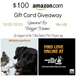 Enter : Shelter Pets $100 Amazon GC Giveaway  #shelterpetlove