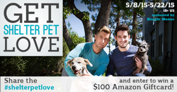 Enter : #shelterpetlove Giveaway