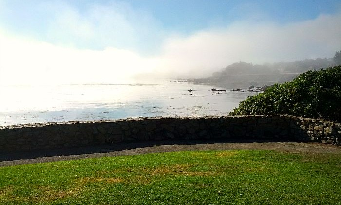 7 Tips for Planning Your Trip to Monterey