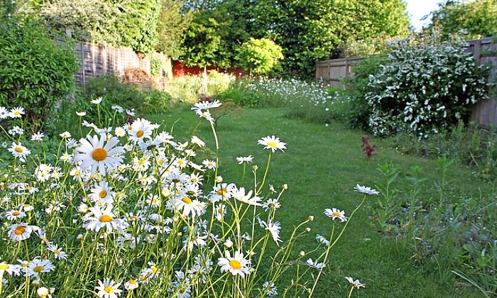 Outdoor Spaces: Tips For Using Your Garden To Increase Property Value